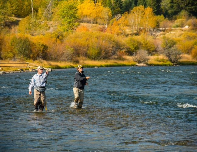 1000 images about fishing tips on pinterest fly tying for Orvis fly fishing 101