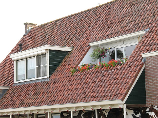 Inverted dormer roof deck.  That would be awesome! (but probably won't happen!)