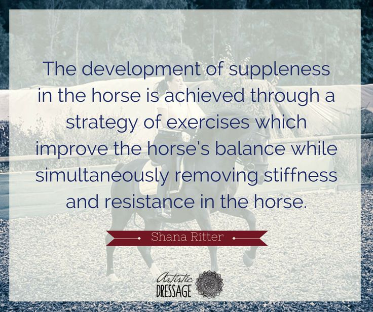 """The development of suppleness in the horse is achieved through a strategy of exercises which improve the horse's balance while simultaneously removing stiffness and resistance in the horse."" - Shana Ritter artisticdressage.com"
