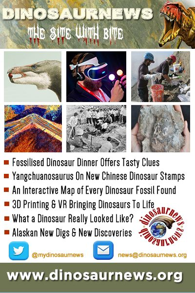 This Week - Fossilised Dinosaur Dinner Tasty Clues * Chinese Dinosaur Stamps * Interactive Map of Every Dinosaur Fossil Found * 3D Printing & VR Bring Dinosaurs To Life * What a Dinosaur Really Looked Like http://www.dinosaurnews.org #dinosaur #dinosaurs #dinosaurnews #news