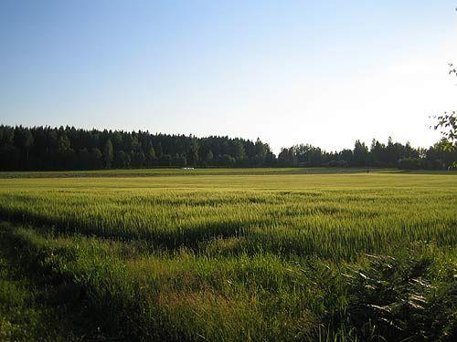 View over fields, Raala/Nukari