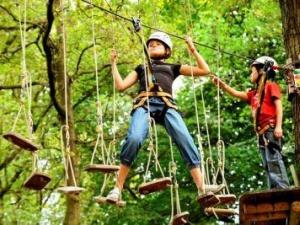 Vier een feestje op grote hoogte bij Klimpark Fun Forest Venlo!
