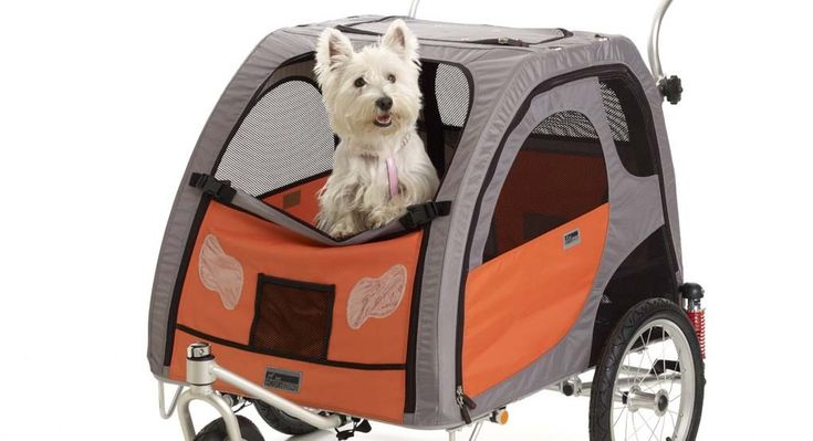 Best Dog Trailer for Bike