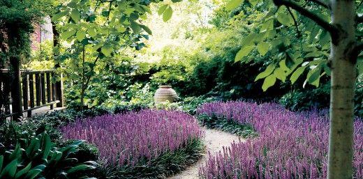 Small Courtyard Gardens Plants