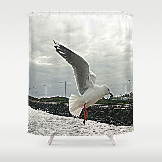 Seagull, In Flight, Motion, Detail, Bird, Australian Beaches.
