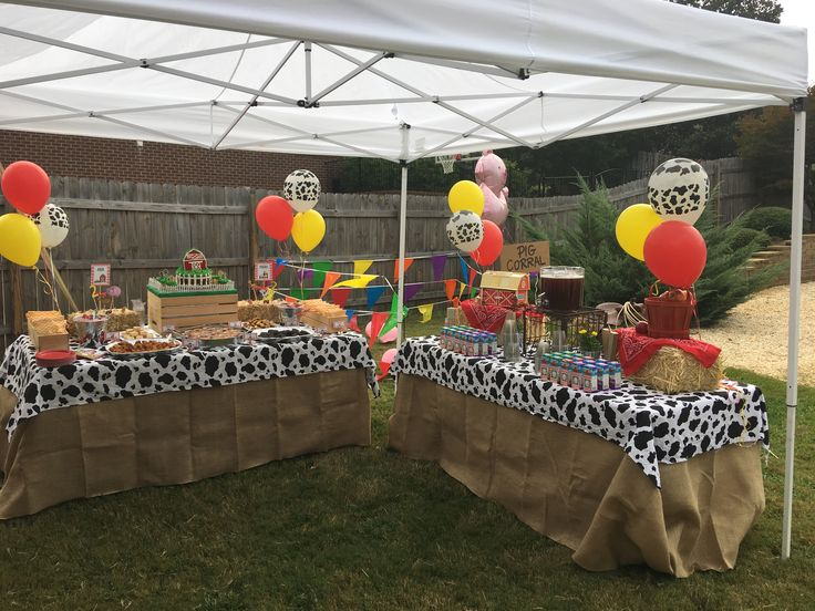 Theme Old Mcdonald Birthday Party Party Venue Private