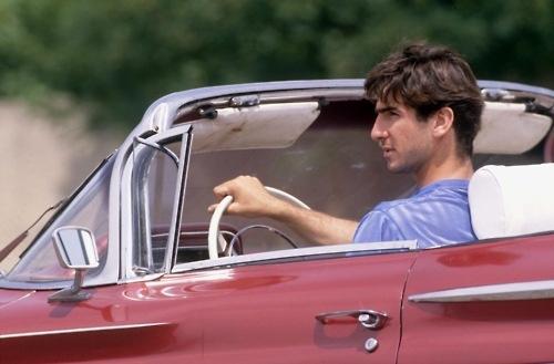 Sinek kaydı Eric Cantona..