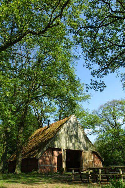 Erve Beverborg, en authentiek Los Hoes en officiële trouwlocatie van de gemeente Losser www.florilympha.nl