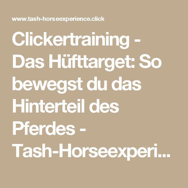 Clickertraining - Das Hüfttarget: So bewegst du das Hinterteil des Pferdes - Tash-Horseexperience