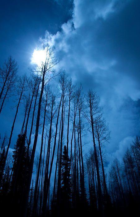 Colorado winter sky