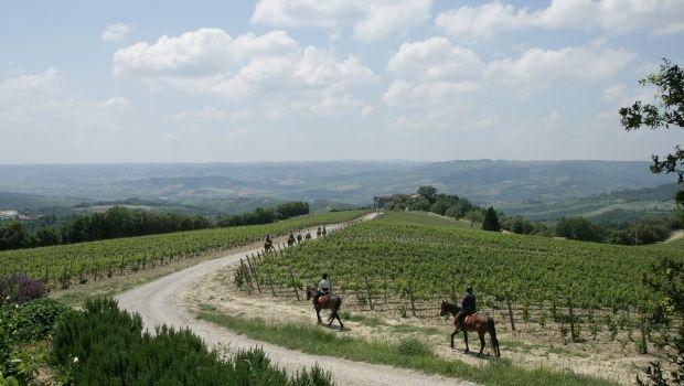 La Casella | Umbria | Italy