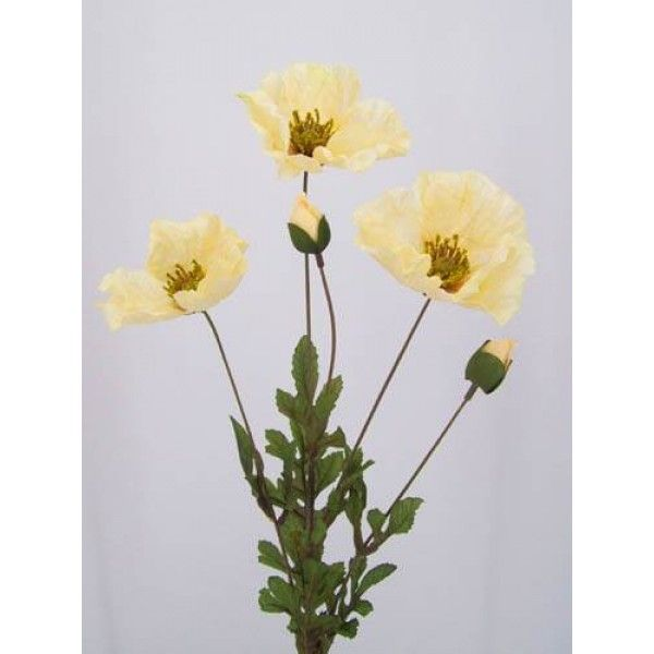 Silk Poppies Gold Yellow  - P003a