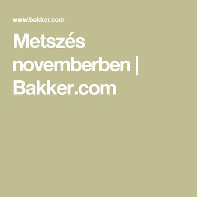 Metszés novemberben   Bakker.com