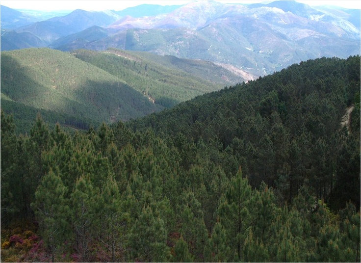 Serra da Estrela Natural Park,   #Portugal