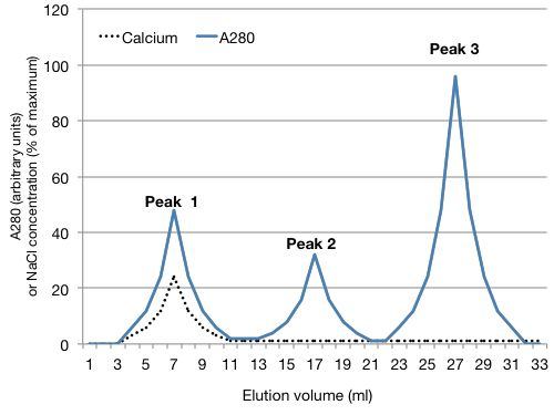 A graph. The x-axis shows elution volume in milliliters. The Y axis shows absorbance at 280 (in arbitrary units), and the concentration of sodium chloride (as percent of maximum). There are A280 peaks at 7, 17 and 27 milliliters elution volume. The second line shows the amount on radioactive carbon that elutes from the column. There is a radioactive calcium peak at 7 millileters of elution volume.