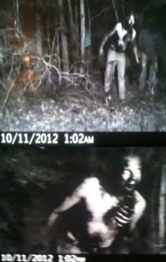 SCARY PICS CAUGHT ON NIGHT CAMERA...NO ONE Expected to See THIS! - Likes