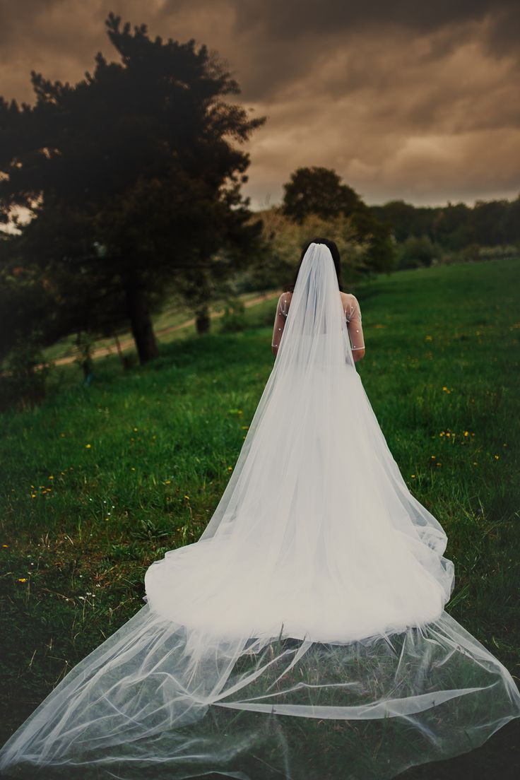 Tulle wedding dress with long veil and train