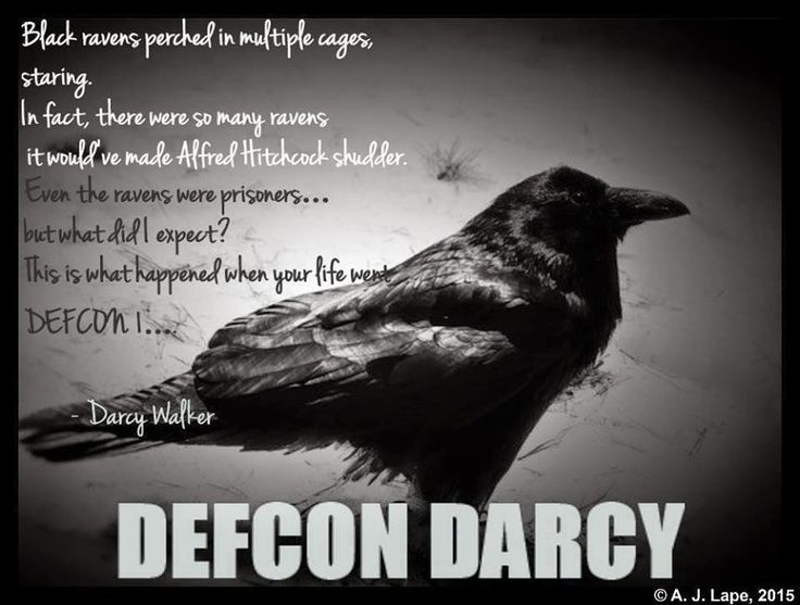 """Books Direct: """"DEFCON Darcy"""" by A. J. Lape"""