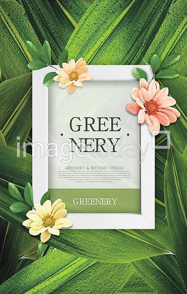 psd 그리너리 계절 그린 꽃 디자인소스 보태니컬아트 봄 색 초록색 식물 프레임 합성이미지 이미지 디자인 greenery season green flower designsource design image botanical art color plant frame 이미지투데이 통로이미지 #imagetoday #tongroimages