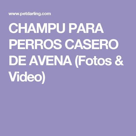 CHAMPU PARA PERROS CASERO DE AVENA (Fotos & Video)