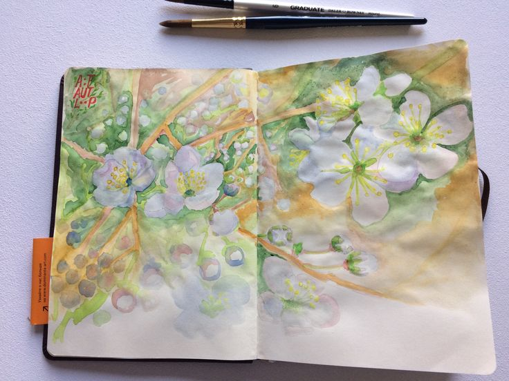 Daily sketch. Inspiration from the spring cherry blossom. #sketch, #watercolor, #blooming, #inspiration, #inspire