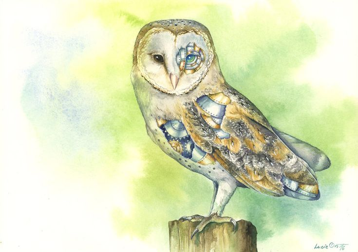 A Different Kind of Owl by LucieOn.deviantart.com on @DeviantArt