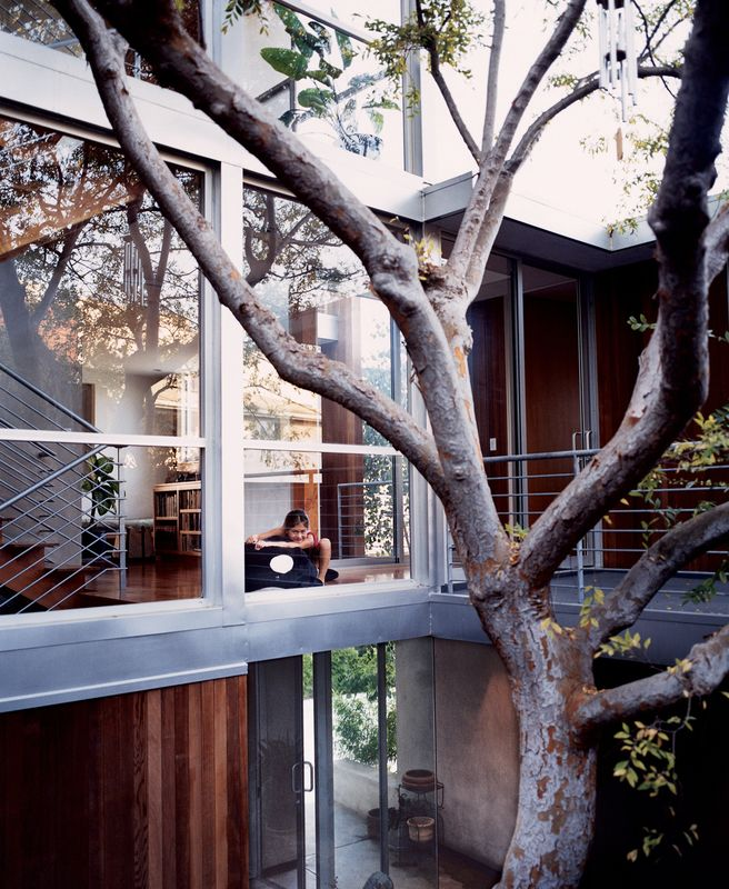 Kalia, just outside the playroom, overlooking the courtyard and the Chinese elm around which the entire interior was built.