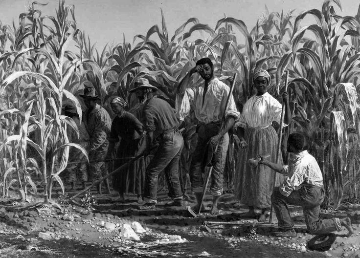 Slavery and the Three-Fifths Compromise by Professor John P. Kaminski