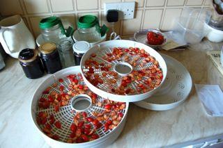 How to Dry & Store Rose Hips for Rose Hip Tea