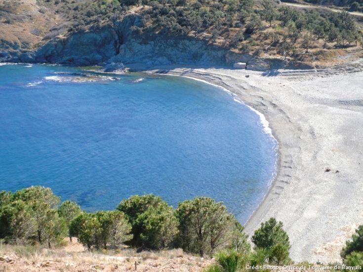La plage de Peyrefite à Cerbère