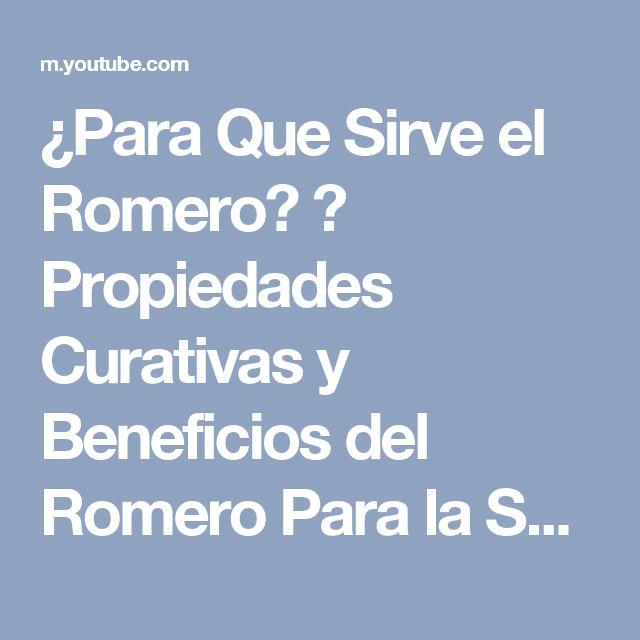 ¿Para Que Sirve el Romero? ➜ Propiedades Curativas y Beneficios del Romero Para la Salud y Belleza - YouTube