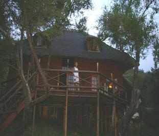 Fish Eagle Log Cabin