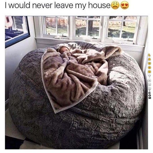 I would never leave