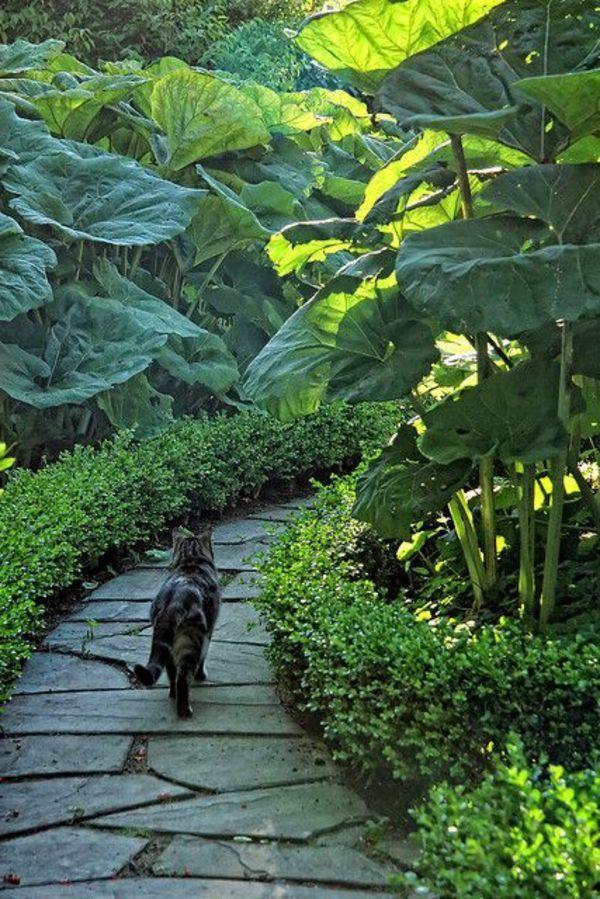 Allee De Jardin En Pierre Allees Jardin Jardin Balinais Jardins