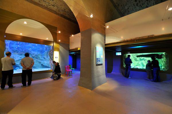 Aquarium de Limoges, France