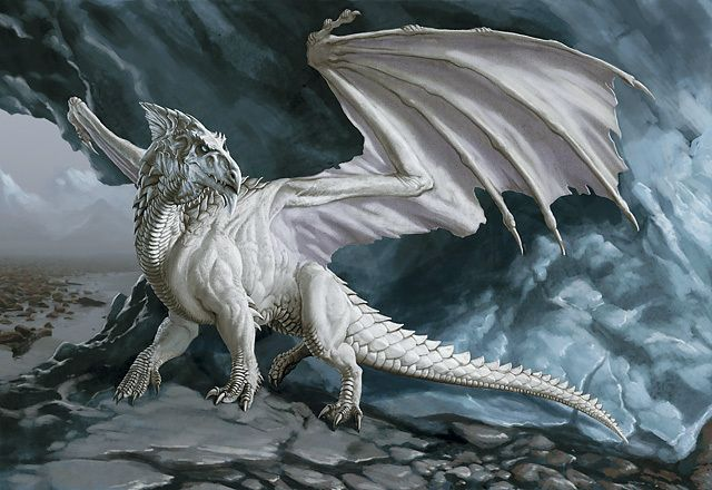 White dragon (Dungeons & Dragons) - Monsters & Creatures Wiki