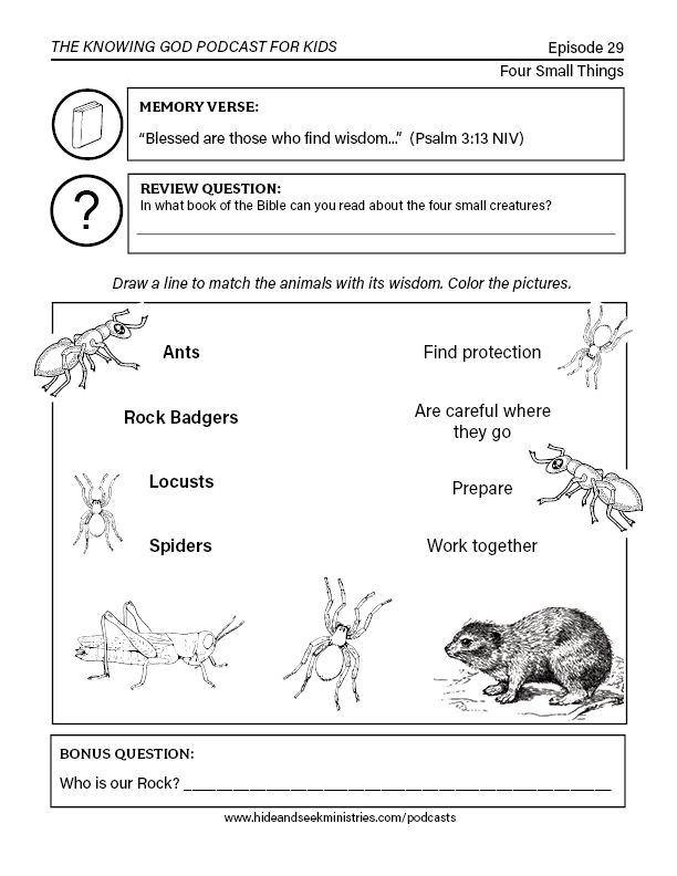 Pin On Kids Bible Activities Free Printables Free bible worksheets for grade
