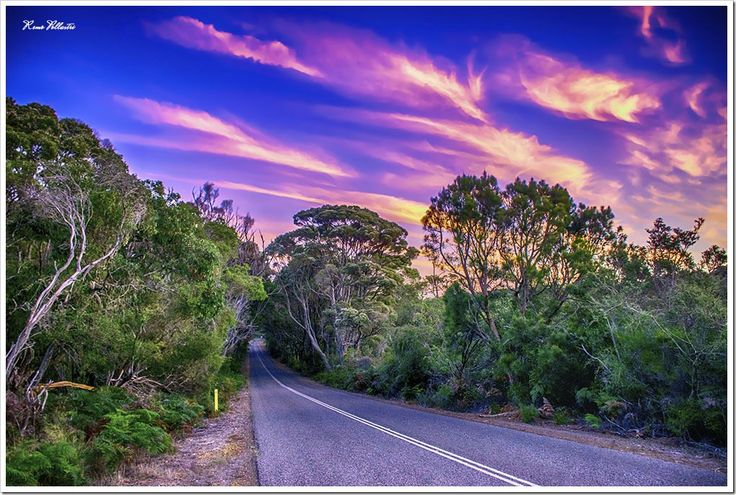The road between Denmark & Margaret river, Western Australia