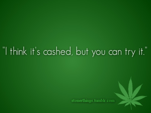 a quote every stoner says