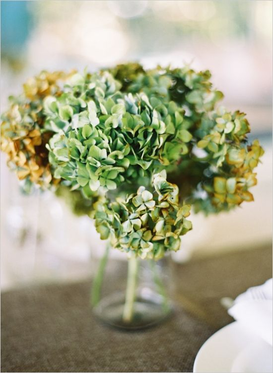 Best images about dried hydrangea on pinterest