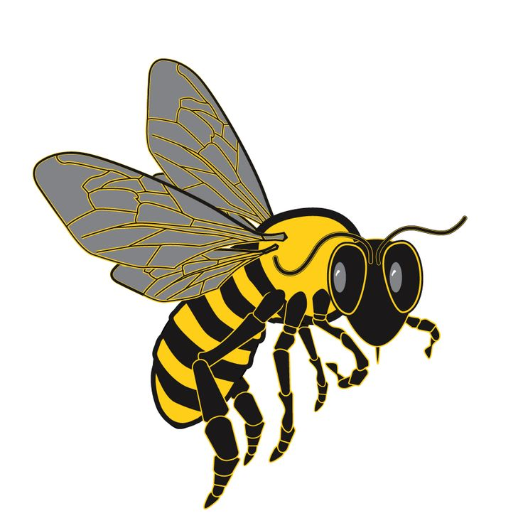 bee logos clip art - photo #17