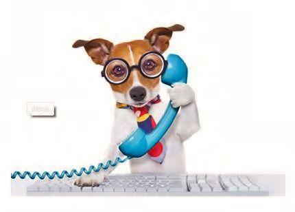 Votre animal doit se faire vacciner ou doit consulter chez son praticien ? Prenez son carnet de santé, notre #chauffeur transport de personnes #Odyscab l'installera dans le véhicule adapté à ses besoins et prendra la direction de votre #vétérinaire. Une urgence ? Votre animal ne se sent pas bien ? Certaines #cliniques vétérinaires sont ouvertes 24 heures sur 24 appelez le 01 84 23 08 08 et nous vous y conduirons. http://www.odyscab.fr/