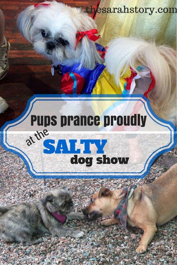Salty Dog Show
