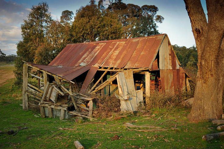 Ryannah Shearing Shed . [Click on thumbnail for larger image and ...737 x 490106.7KBwww.victorianweb.org