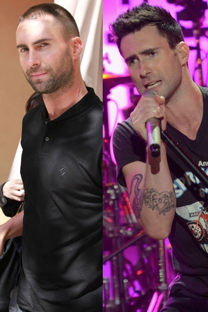 Adam Levine showed up in LA yesterday rocking a shaved head -- a far cry from the carefully crafted coiff The Voice mentor has sported since breaking onto the scene in 2002.