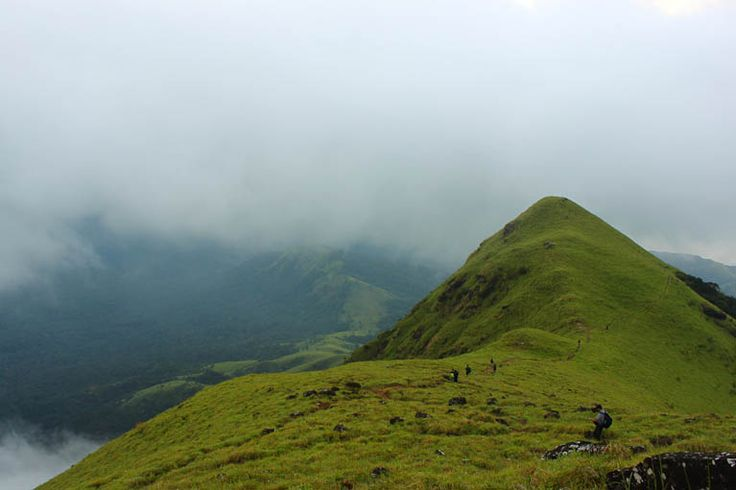 Trek To Kumara Parvatha >>>  The most sought destination when it comes to trekking largely due to its climatic conditions and lush green nature, as it comes under varsity of the Western Ghats its Trekkers paradise. It is at the height of 1700 metres above sea level beneath Kukke Subramanya a famous temple town.  #trekking #trekker #TrekToKumaraParvatha