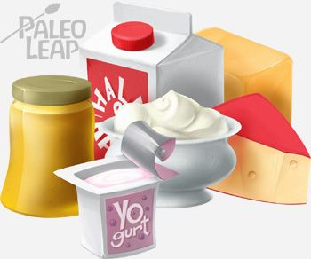 The Place of Dairy on a Paleo Diet | Paleo Leap
