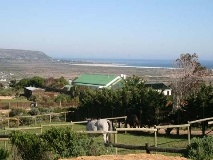 Stunning Sea Views from large thatched homestead.  Noordhoek, Cape Peninsula.  South Africa.  Web ref:  185935. www.seeff.com