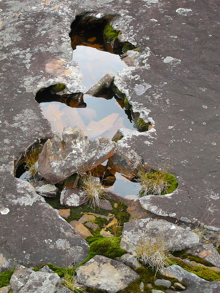 rock pool, Mt Hay