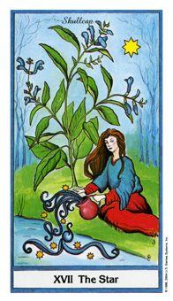 June 4 Tarot Card: The Star (Herbal Tarot deck) Positive winds are blowing! Ride on your confidence and let yourself be inspired